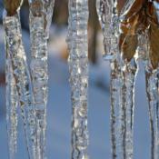 February Sample: Frozen Water